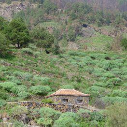 Wandelen op La Palma zuidoosten