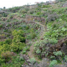 La Palma Wandelen Tijarafe